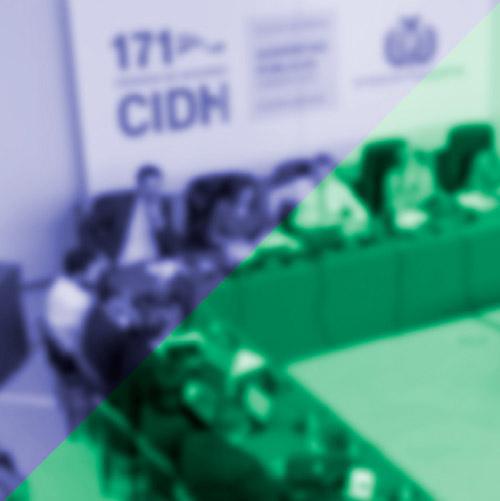 La renovación de integrantes en la Comisión Interamericana de Derechos Humanos. Presentación de los resultados del Panel de Expertos Independientes