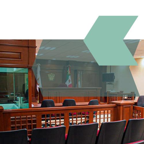 Curso-taller: Metodología de las Audiencias en el procedimiento penal. 2a. edición. 2020