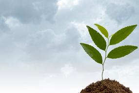 encuesta-medio-ambiente